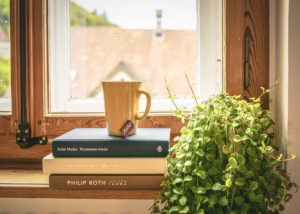 Окно и книги